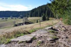 Wanderpfad_Die-Lauterbacher-Hochtalrunde-3
