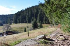 Wanderpfad_Die-Lauterbacher-Hochtalrunde-39