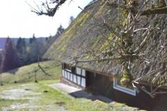 Wanderpfad_Die-Lauterbacher-Hochtalrunde-42