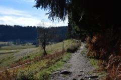 Wanderpfad_Die-Lauterbacher-Hochtalrunde-8