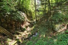 Wildberg_Luetzenschlucht_Sommer_Wanderweg-32